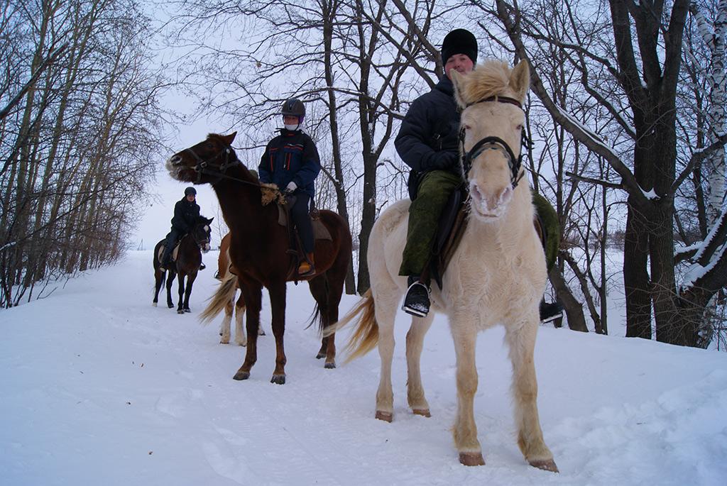 Конный туризм Самарская Лука