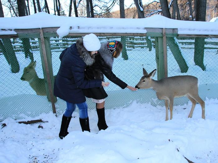 Сотрудники Газпром-Самара принесли подарки диким пострадавшим животным Самарской Луки